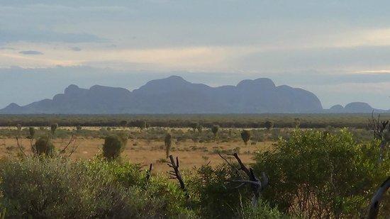 Desert Awakenings Tour: The Olgas at sunrise