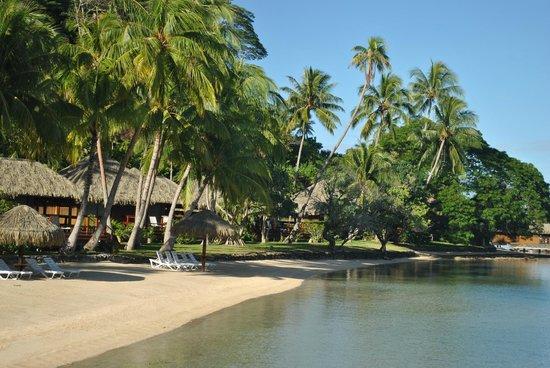 Royal Huahine: Orilla de playa..