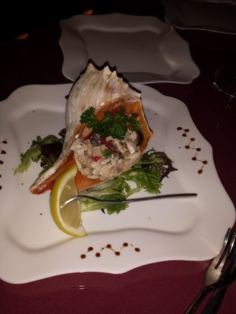 Bella Vita: Conch salad on the shell!