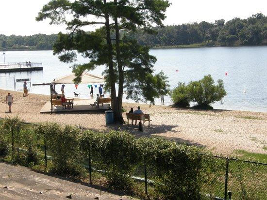 Bayview Dog Beach