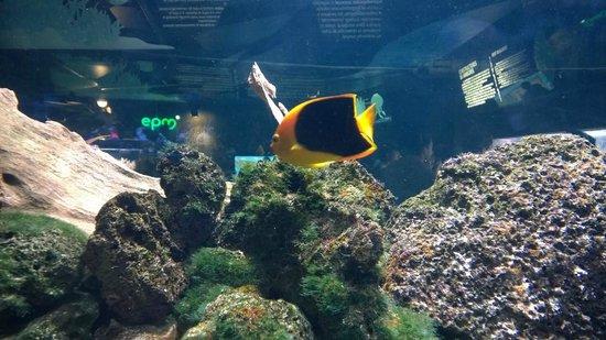 Parque Explora: Large aquatic area