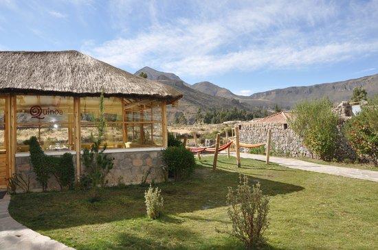 Killawasi Lodge: Comedor y hamacas