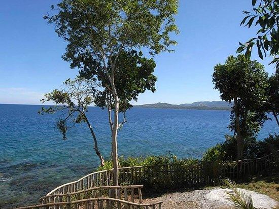 Bohol Lahoy Dive Resort: Blick vom Zimmer