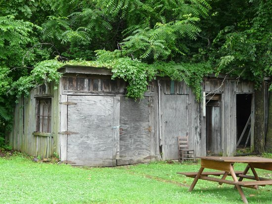 Slave Haven / Burkle Estate Museum : Back yard