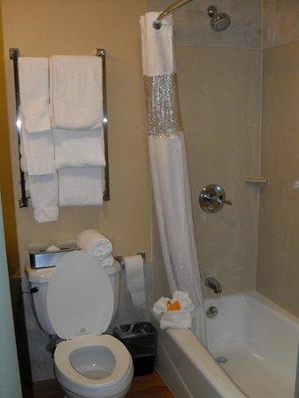 La Quinta Inn & Suites Brooklyn Downtown: Salle de bain avec baignoire