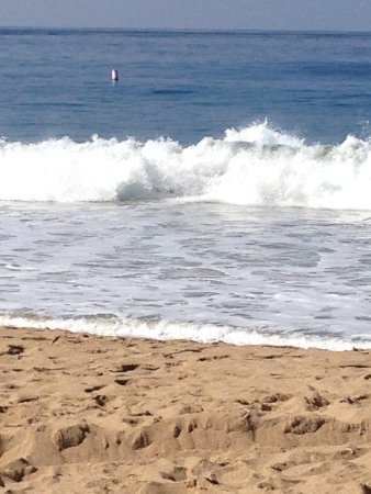 Doheny State Beach: Love is in The Air
