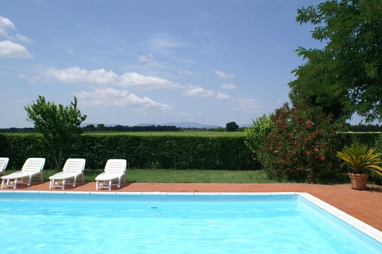 Il Poggiarello: View of hedge and then vineyards from pool