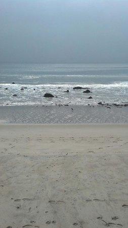 Дана-Пойнт, Калифорния: Smell The Ocean