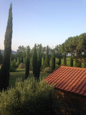 Il Poggiarello: View of grounds from Il Pino