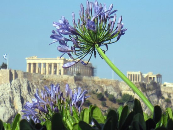 Hotel Grande Bretagne, A Luxury Collection Hotel: View from rooftop restaurant toward Acropolis