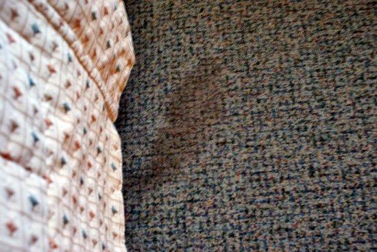 "Hotel President: ""Superior"" room carpet"