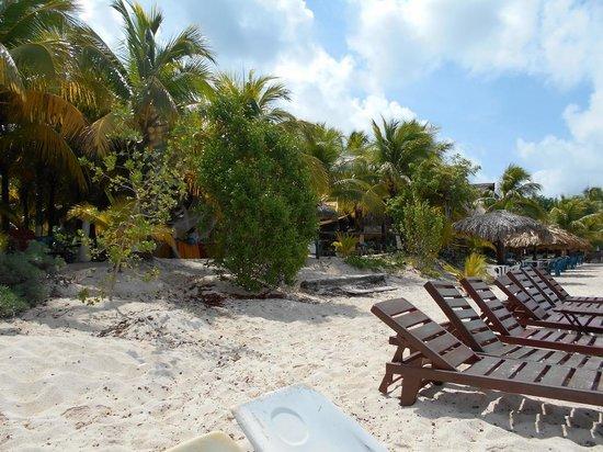 Playa Palancar: beach