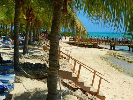 Jimmy Buffett's Margaritaville: Palms near the beach