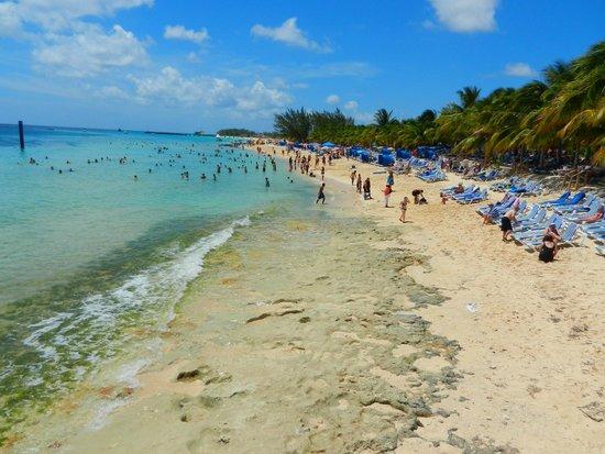 Jimmy Buffett's Margaritaville: beach goes for miles
