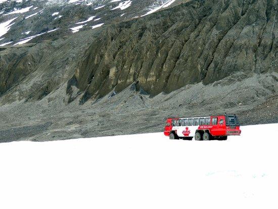 Columbia Icefield Glacier Discovery Centre : The bus to the glacier.