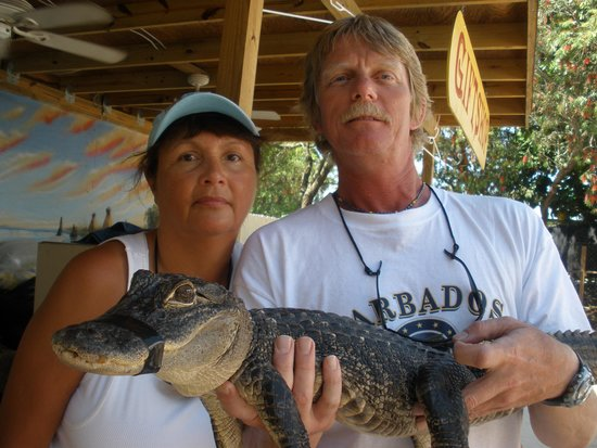 Everglades Holiday Park : Alligator skin is really smooth. Not what I had expected.