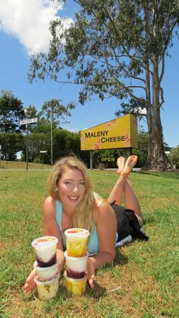 Maleny Cheese: relax and enjoy our yoghurt range