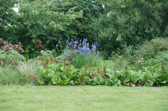 Coill Dara House B&B: Beautiful garden