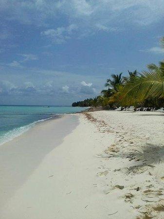 Isla Saona: Un paraíso :)