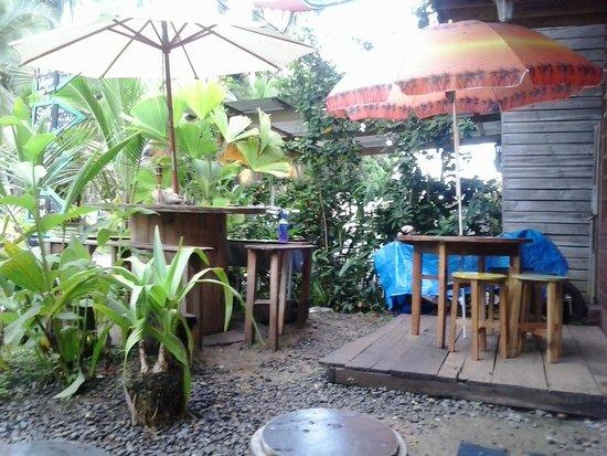 Coconut Hostal: cortiletto