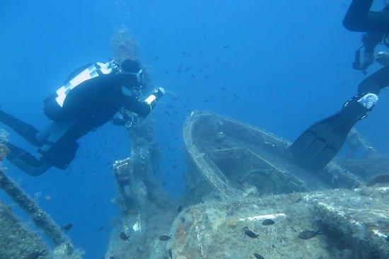 Dive-In Larnaca: Zenobia treasures:)