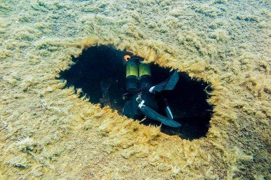 Dive-In Larnaca: Entrance:)