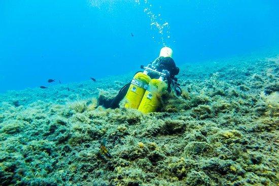 Dive-In Larnaca: Exit:)