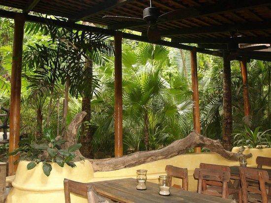 Vallarta Adventures - Las Caletas Beach Hideaway: Eating Area in the Jungle