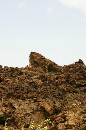 Lava Fields: Lava Chunks!