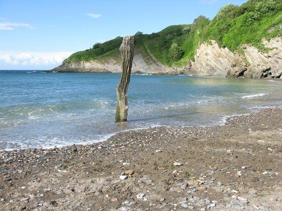 Hele Valley Holiday Park: Hele Bay - 5 mins walk away