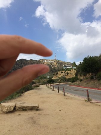 "Hollywood Sign: ""Hollywood"""