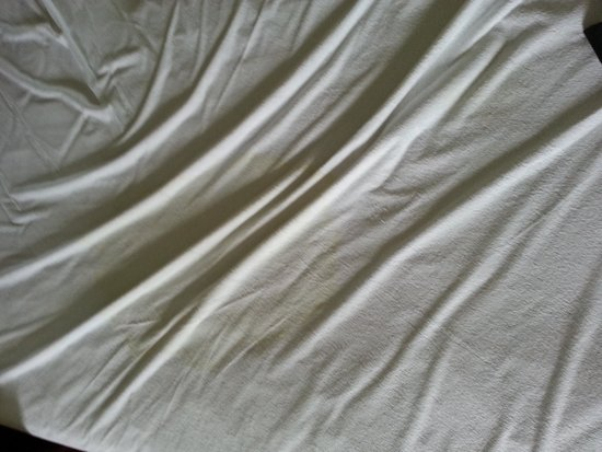 The Patricia Grand, Oceana Resorts: Second Urine Stain on Bed Liner