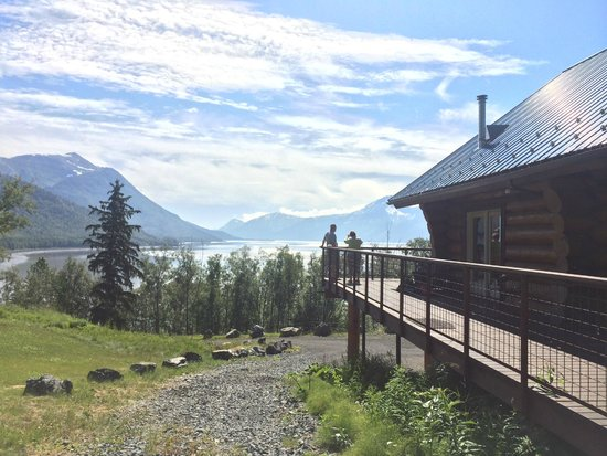 Turnagain View Lodge : The View