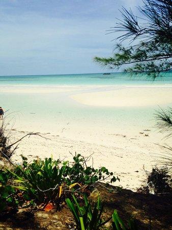Memories Grand Bahama Beach and Casino Resort : Gold Rock Beach - GORGEOUS!