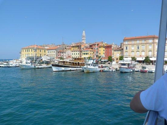 Villa Tuttorotto: harbour
