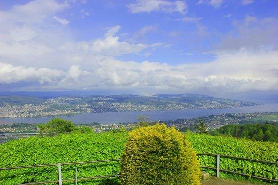 Uetliberg Mountain : View from Uetliberg, overlooking Lake Zurich