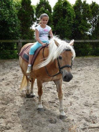De Kruishoeve: Paardeliefhebbers