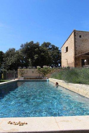 La Bergerie de Nano : The pool