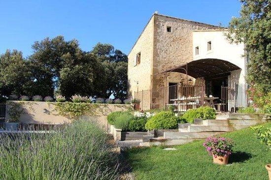 La Bergerie de Nano : The lovely garden and terrace