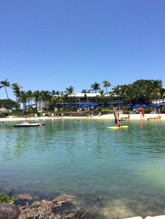 Hawks Cay Resort: The lagoon