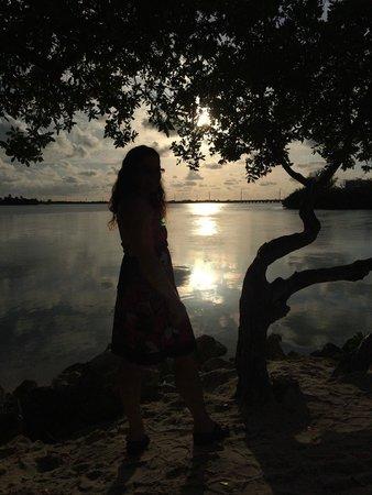 Hawks Cay Resort: By sunset villas