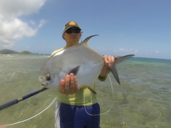 Antigua Fly Fishing & Light Tackle Charters: Permit on the fly
