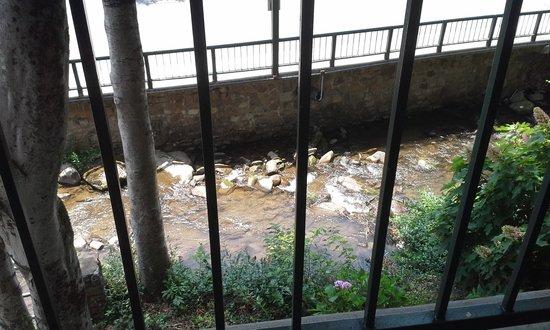 Quality Inn Creekside: Balcony view