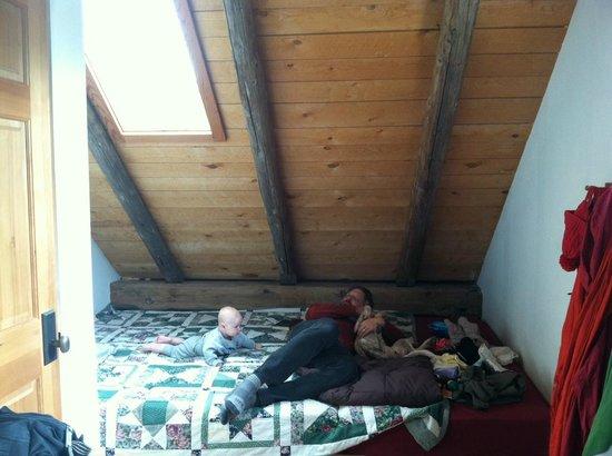 OPUS Hut: The nest