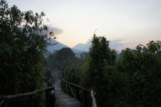 Mountain Gorilla View Lodge: Sunrise view from the lodge