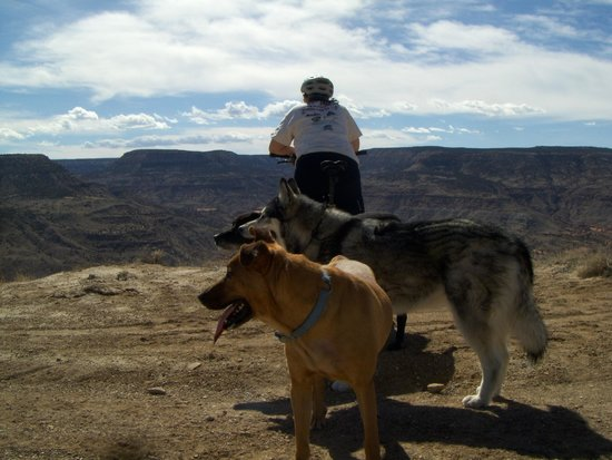 Dominguez Canyon: Betty and the gang look over at Dominguez Wilderness