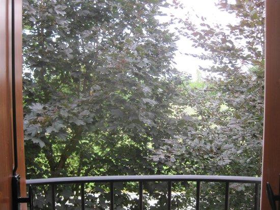 Agriturismo Fattoria Grimana: Apartment room view