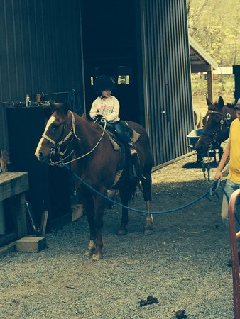 Yokum's Seneca Rocks Stables: First Big Trail Ride To The Top