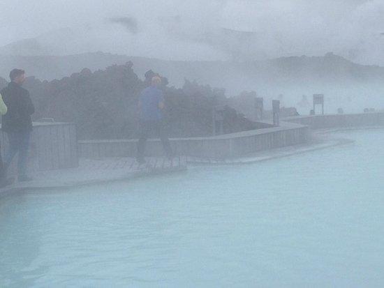Blue Lagoon Iceland : Swimming area