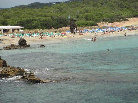 Fiesta Hotel Cala Nova : cala nova beach